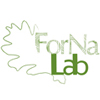 Forest nature lab